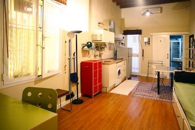 Sublime studio apartment near Alameda de Hercules  - Gallery -  1
