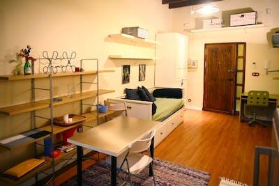 Sublime studio apartment near Alameda de Hercules  - Gallery -  2