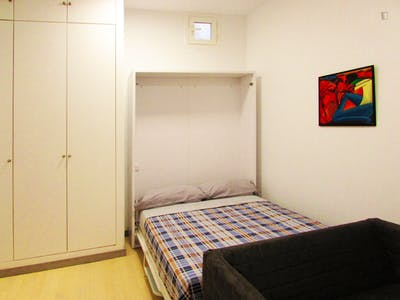 Well-located studio in Lavapiés, central Madrid  - Gallery -  3