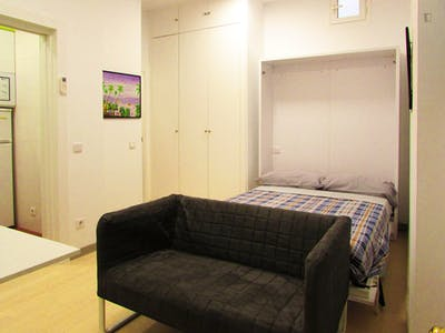 Well-located studio in Lavapiés, central Madrid  - Gallery -  2