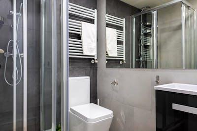 Tasteful double bedroom in a modern flat, in Delicias  - Gallery -  2