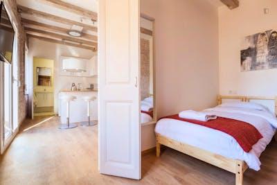 Superb 1-bedroom apartment in La Barceloneta  - Gallery -  3