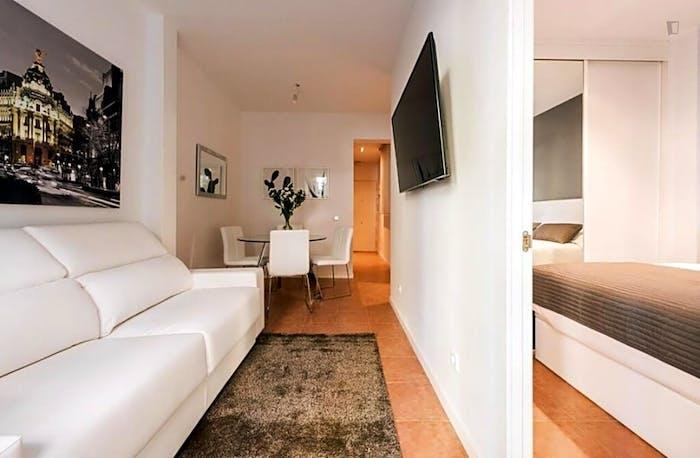 Wonderful 1-bedroom apartment near UNED - Facultad de Derecho  - Gallery -  9