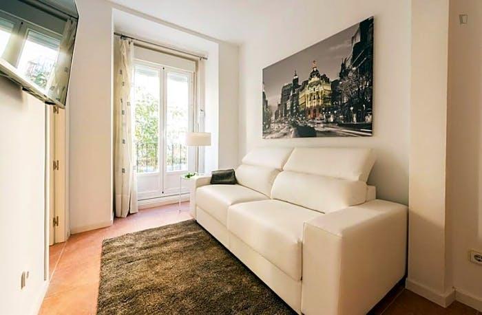 Wonderful 1-bedroom apartment near UNED - Facultad de Derecho  - Gallery -  7