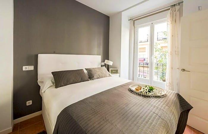Wonderful 1-bedroom apartment near UNED - Facultad de Derecho  - Gallery -  2