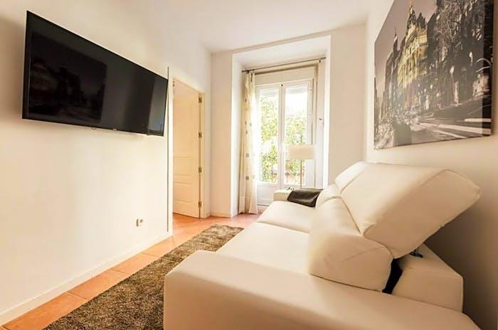 Wonderful 1-bedroom apartment near UNED - Facultad de Derecho  - Gallery -  8
