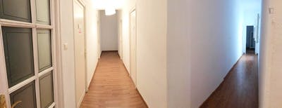 Sublime single bedroom in a student flat, in the centre of Cordoba  - Gallery -  3