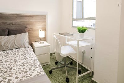 Superb single bedroom in a student flat, in Valencia  - Gallery -  1