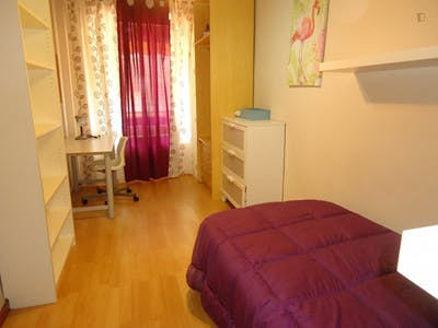 Tasteful single bedroom in a student flat, in Ciudad Jardin  - Gallery -  1