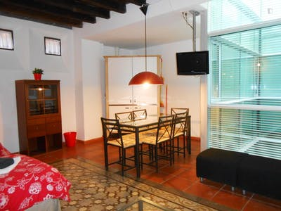 Very cool 2-bedroom apartment in the hip centre of Granada  - Gallery -  3