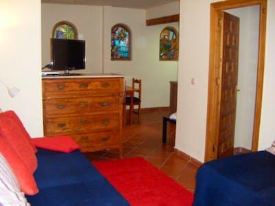 Swell 1-bedroom apartment in El Albaicín  - Gallery -  2