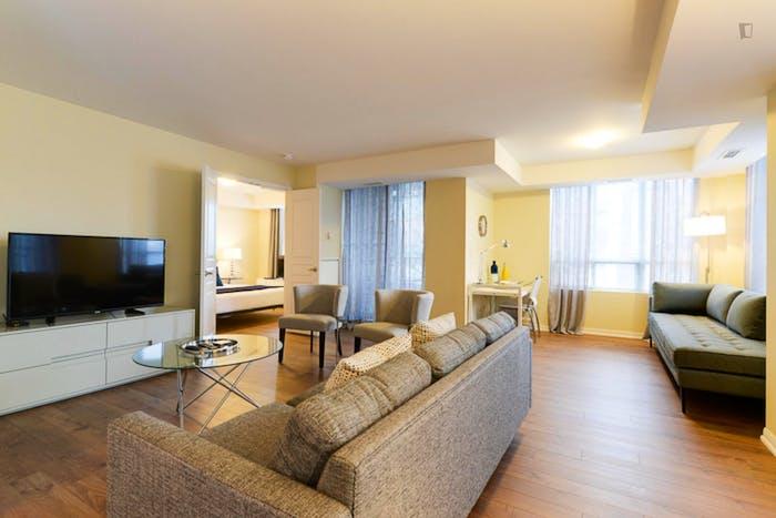 Wonderful 2-bedroom apartment in Toronto, near Osgoode subway station  - Gallery -  9