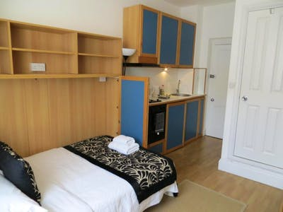 Stupendous studio near park on Fulham Palace Road  - Gallery -  3