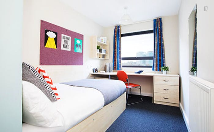 Welcoming studio in a residence, near the Stepney Green tube  - Gallery -  5