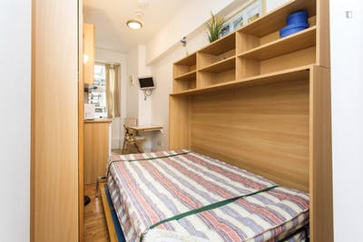 Studio with shared bathroom in Earl's Court  - Gallery -  1