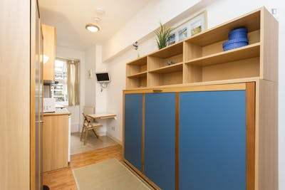 Studio with shared bathroom in Earl's Court  - Gallery -  3
