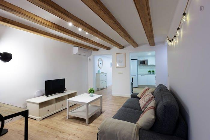 Welcoming 2-bedroom flat in El Raval  - Gallery -  5