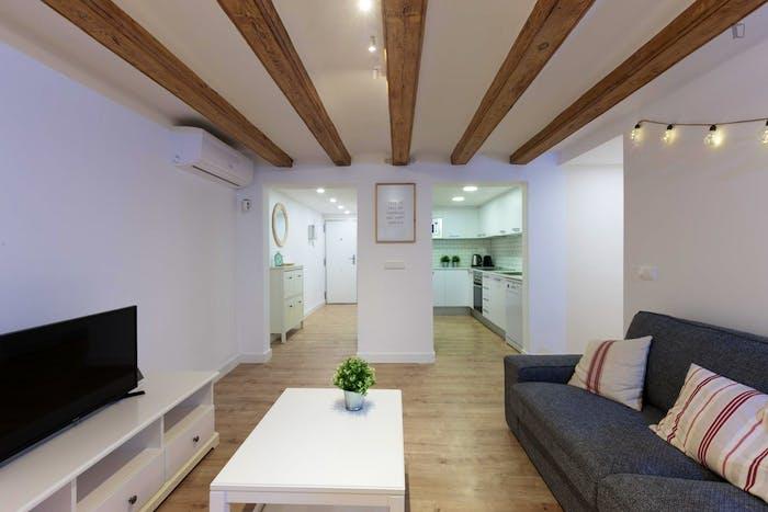 Welcoming 2-bedroom flat in El Raval  - Gallery -  6