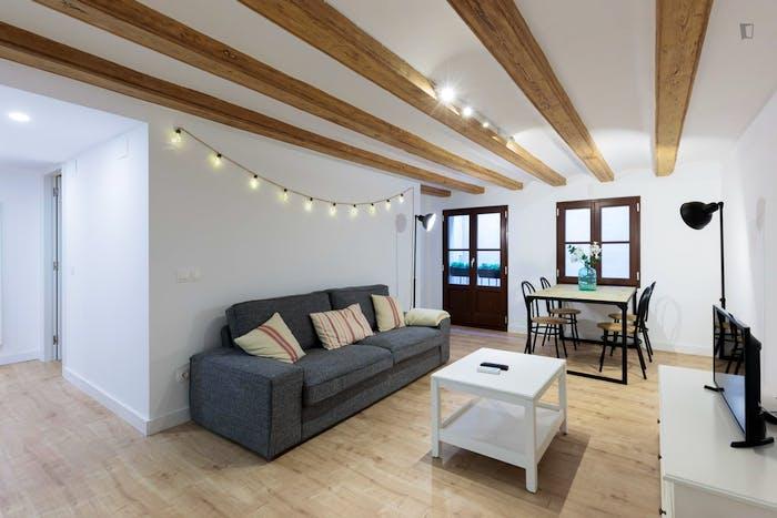 Welcoming 2-bedroom flat in El Raval  - Gallery -  4