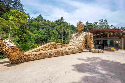 Selina Monteverde