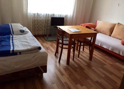 Amazing single bedroom in a 2-bedroom apartment in Munich, near Olympiapark