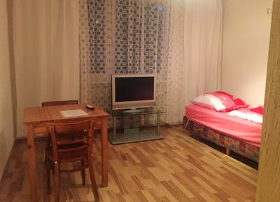 Nice single-bedroom in a 2-bedroom apartment in Munich, right next to Olympiapark