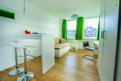 Cosy Studio Apartment with kitchen