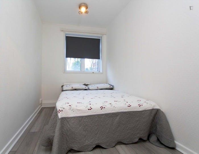 Well-lit double bedroom in Hampstead  - Gallery -  4