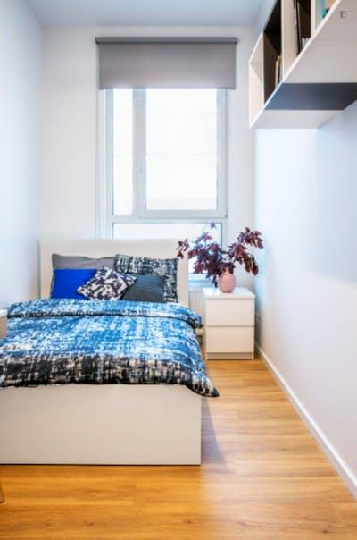 Amazing single bedroom in Krakow