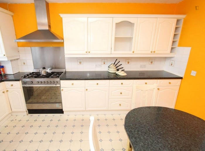 Wonderful double bedroom in a nice flat, near the Stratford train station  - Gallery -  6