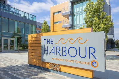 The Harbour  - Gallery -  1