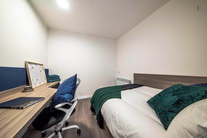 Welcoming double ensuite bedroom in the West Bar neighbourhood  - Gallery -  2