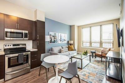 Extraordinary 1-bedroom apartment in Pentagon City