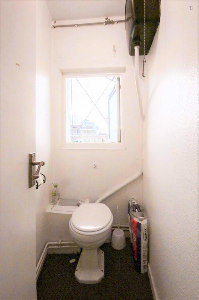 Welcoming double bedroom in Hampstead  - Gallery -  9