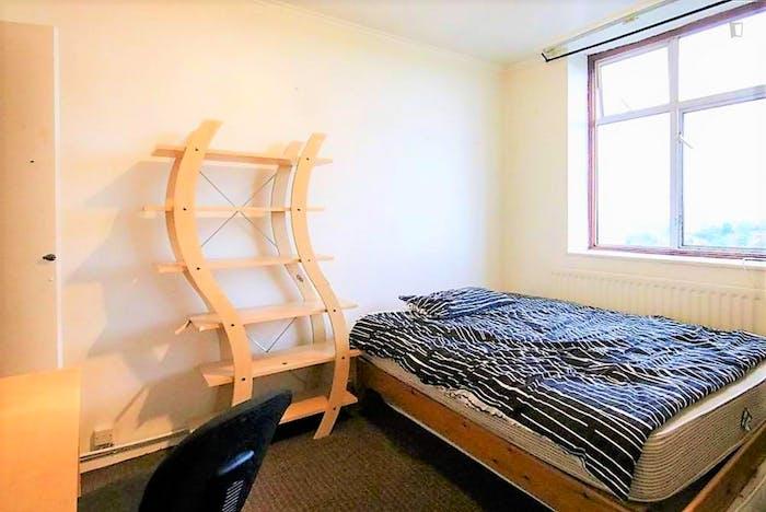 Welcoming double bedroom in Hampstead  - Gallery -  2