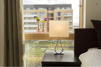 Welcoming single bedroom near the Canning Town DLR Station  - Gallery -  3
