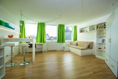 Amazing studio with kitchen