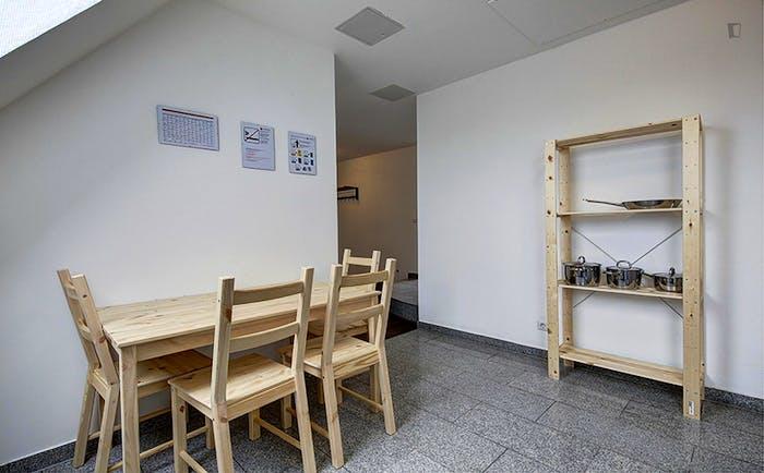Very spacious room in Bad Cannstatt  - Gallery -  4