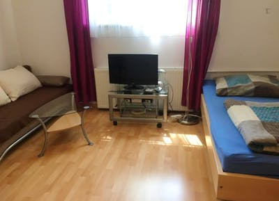 Spacious 1-bedroom apartment in Munich, Schwabing right next to Olympiapark