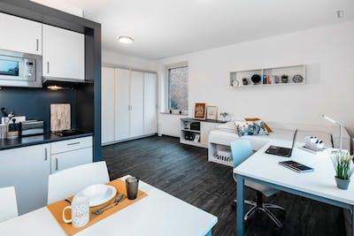 Comfortable studio XL Silver, in a residence near Park Sentmaring